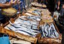 Pesce intriso di mercurio, un gravissimo rischio per la tua salute: ecco quale non devi mangiare