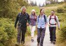 Ecco quanti minuti bisogna camminare al giorno per sgonfiare pancia e gambe e perdere peso